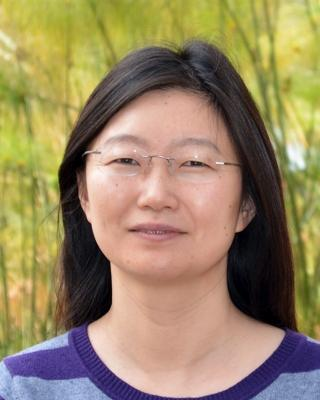 Lingyun Xu PhD