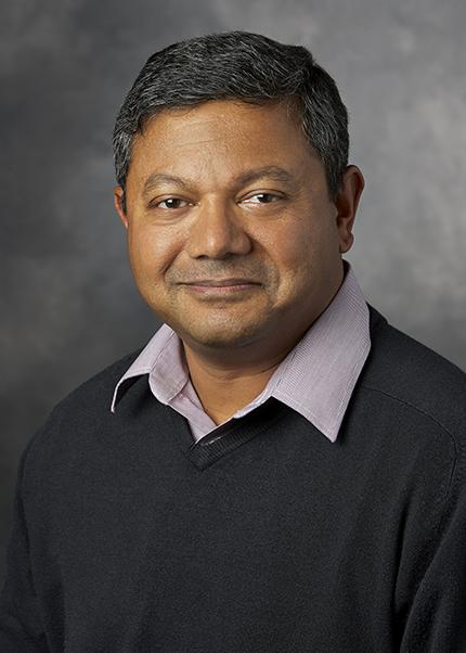 Professor Arun Majumdar