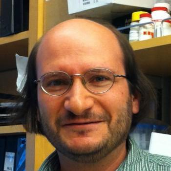 Michael Bassik