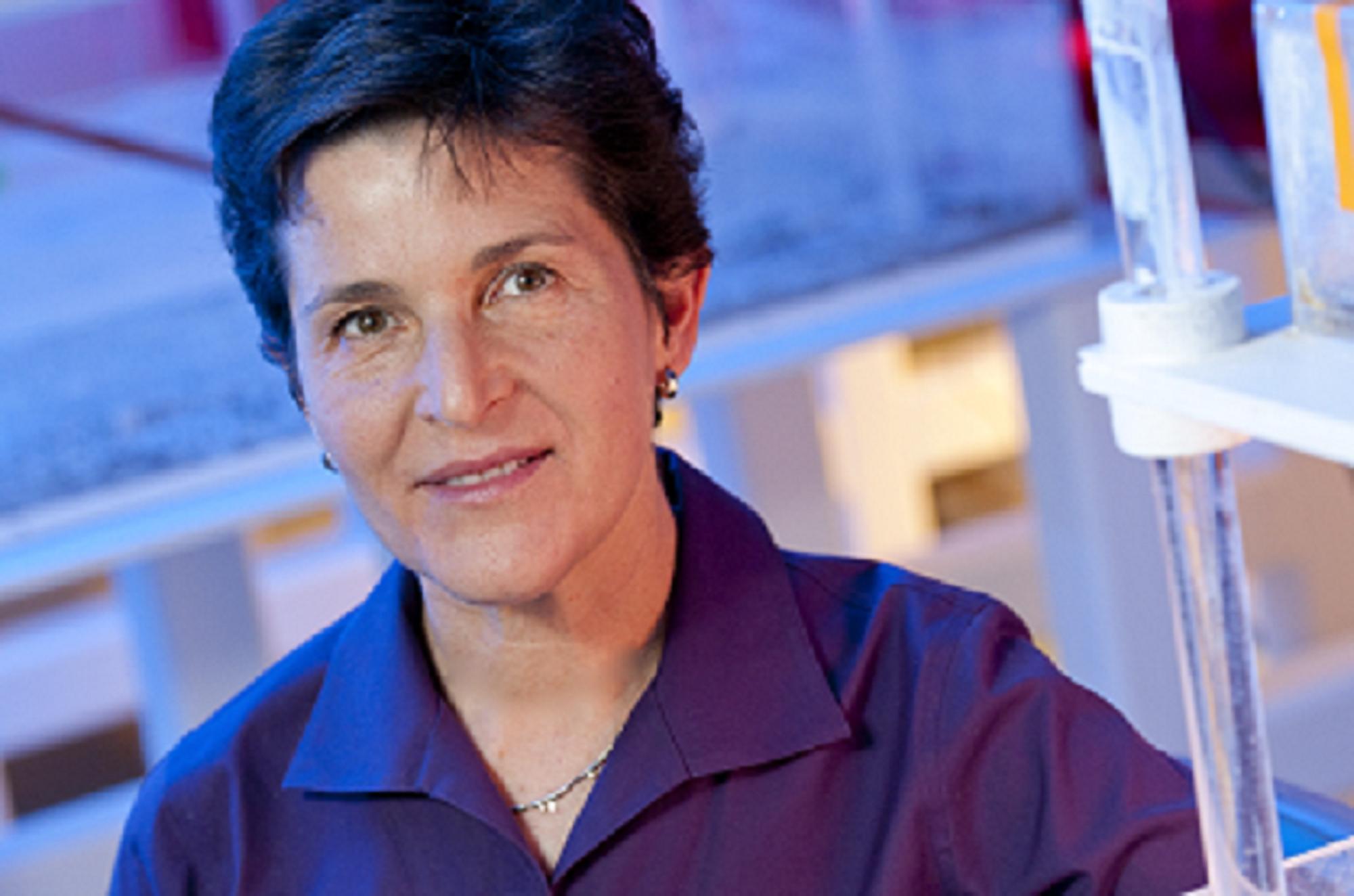 Deborah M Gordon